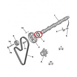 Camshaft seal Peugeot/Citroen 36x50x8