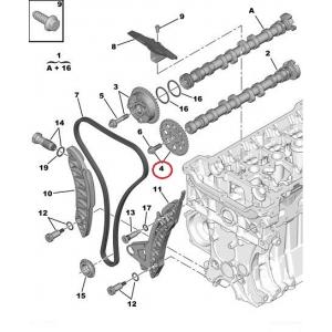 Väljalaske nukkvõlli ketiratas Citroen/Peugeot EP-mootorid (turboga)