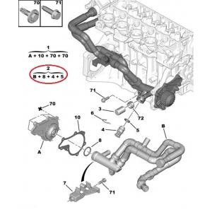 Jäähdyttimen letku Citroen/Peugeot 1,4HDI