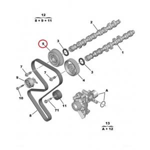 Nukkvõlli rihmaratas väljalase Citroen/Peugeot EW10J4