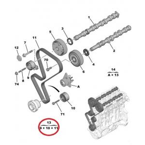 Hammasrihma komplekt OEM Peugeot/Citroen 1,4 16V