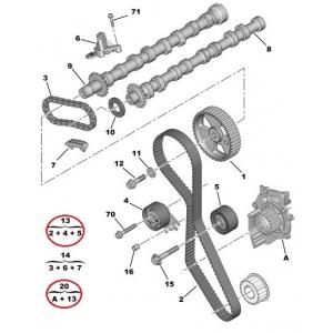 Комплект зубчатого ремня + водяная помпа OEM Peugeot/Citroen 2,0HDI