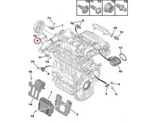 Sisselaske kollektori rõhuandur  Peugeot/Citroen