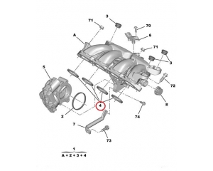 Sisselaske kollektori tihendite komplekt Citroen/Peugeot EP6