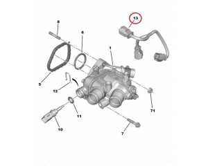 Thermostat wire assembly PSA EP6-engine