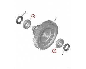 Gearbox (differential) bearing Citroen/Peugeot BVM6
