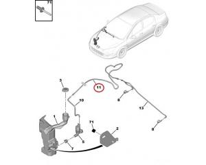 Lasinpesimen letku Peugeot 407