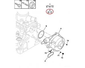 Vaakupumba tihendi komplekt  Citroen/Peugeot