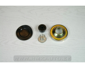 Fuel pump membrane kit