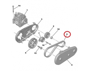 Fuel pump toothed belt Citroen/Peugeot/Landrover/Jaguar 2,7HDI