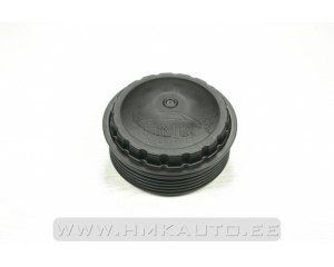 Oil filter cap Renault 2,5DCI