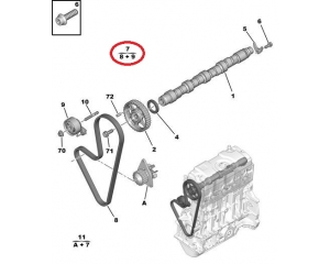 Hammashihnasarja OEM Citroen/Peugeot 1,1i TU1JP