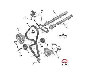 Timing belt kit + water pump OEM Peugeot/Citroen 1,6HDI DV6TED4