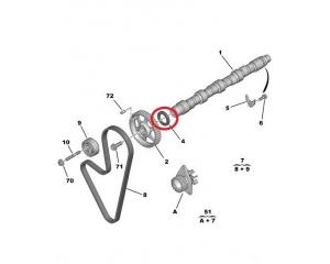 Akselitiiviste, nokka-akseli Peugeot/Citroen 36x50x8