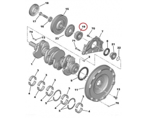 Crankshaft pulley toothed belt Peugeot/Citroen 1.9D/2.0HDI