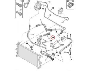 Coolant pipe Jumper/Boxer/Ducato 2,2HDI 2006-
