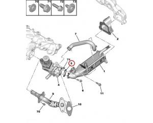 EGR klapi tihend Jumper/Boxer/Ducato 2,2HDI 2006-