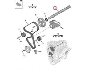 Nukkvõll Citroen/Peugeot 1,6HDI Euro5
