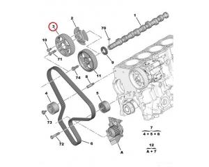 Nukkvõlli rihmaratas Citroen/Peugeot