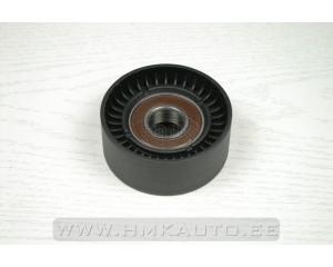 Auxiliary belt tensioner pulley Renault 1.5dCI  01-