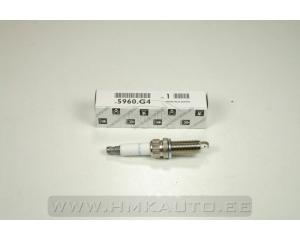 Spark plug OEM Citroen/Peugeot