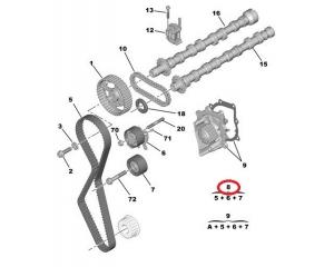 Hammasrihma komplekt OEM Peugeot/Citroen 2,2HDI