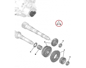Gear wheels, fifth gear Citroen/Peugeot 44x35