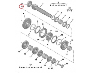 1-2 gear shaft bearing Citroen/Peugeot