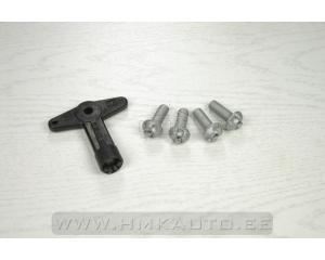 Alloy wheel centre cap screws with key Renault Clio/Modus/Megane/Laguna/Scenic/VelSatis