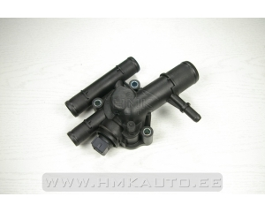 Thermostat with housing Renault 1.9DCI