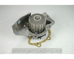 Water pump Citroen Peugeot 1,9D-2,0HDI DW8-DW10