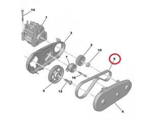 Hammasrihm kütusepumbale Citroen/Peugeot/Landrover/Jaguar 2,7HDI