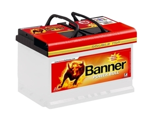 Banner battery Power Bull Pro 100Ah 800A