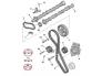 Hammasrihma komplekt + veepump OEM Peugeot/Citroen 2,0HDI