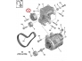 Kiristysrulla, moniurahihna Peugeot/Citroen  2.0HDI/2.2HDI